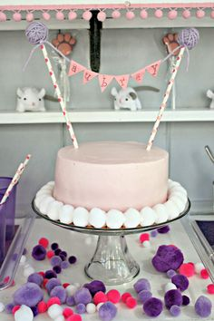 Cat theme birthday party