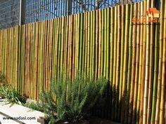 #hogar LAS MEJORES CASAS DE MÉXICO. El bambú es un excelente material de construcción para paredes, ya que es muy económico, resistente, fácil de instalar y estético, sobre todo en espacios al aire libre, como lo son las rejas del jardín, lo que le proveerá de mayor privacidad y seguridad. En Grupo Sadasi, le invitamos a conocer los diferentes modelos de vivienda que hemos diseñado, para el bienestar de usted y su familia. www.sadasi.com