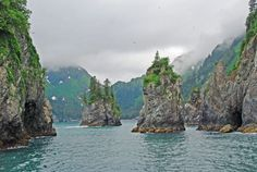 Won't be here, but will be in Alaska very soon. Counting down! Cove of Spires, Kenai Fjords National Park near Seward, Alaska. Oh The Places You'll Go, Places To Travel, Places To Visit, Alaska Travel, Travel Usa, Alaska Trip, North To Alaska, Alaska Usa, Homer Alaska