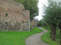 Stadtmauer Zons