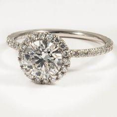 halo ring//