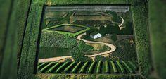 """L'artiste Stan Herd est l'un des plus talentueux en matière de """"crop art"""". Sa passion : créer des œuvres immenses en détournant la végétation et l'environnement et le résultat est absolument impressionnant.Crop art"""