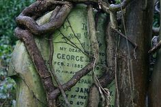 Gravestone in Highgate Cemetery. Cemetery Headstones, Old Cemeteries, Cemetery Art, Graveyards, Highgate Cemetery London, La Danse Macabre, Things To Do In London, Image, London England