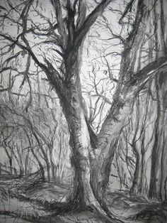 drawings of trees in winter - Google Search