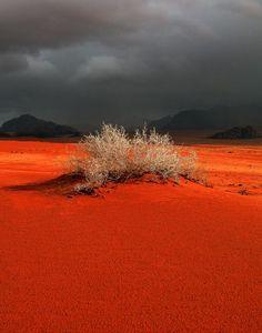 -Red sands at Wadi Rum, Jordan. #DESERT