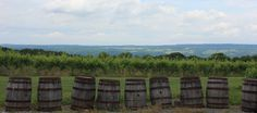 Finger Lakes Wine Country...ahhh