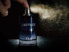Dicas sobre como não usar perfumes.     O perfume é uma das armas mais poderosas…