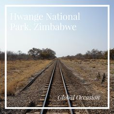 Hwange National Park, Zimbabwe the ultimate spot for an amazing safari holiday. No travel bucket list can be without this beautiful destination in Africa.