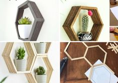 Olha que legal esta ideia de nicho para você fazer em sua casa. São lindos nichos de palitos de picolé em formato hexagonal Honeycomb Shelves, Shadow Photos, Painted Sticks, Popsicle Sticks, Popsicles, Own Home, Decoration, Diy Painting, Activities For Kids