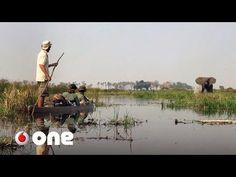 El big data ayuda a preservar el último lugar salvaje del planeta - YouTube