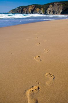 Plan your luxury Australian holiday with The Tailor's selection of places to discover & see in Australia. The Human Stain, 8th Anniversary, Australian Beach, Victoria Australia, Life Is Like, Ocean Beach, Australia Travel, Continents, Beautiful Beaches