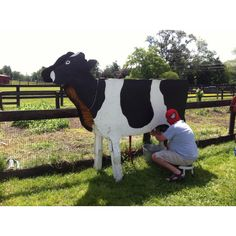Milking a cow .