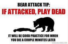 Bear Attack Tip: