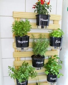 Stunning Apartment Garden Indoor Ideas - You don't need to forfeit your affection for gardening since you're experiencing your huge city dreams-or perhaps you're an all out gardening beginner. Diy Herb Garden, Garden Plants, Raised Herb Garden, Vegetable Garden Design, Vintage Garden Decor, Diy Plant Stand, Plant Stands, Herbs Indoors, Cool Plants