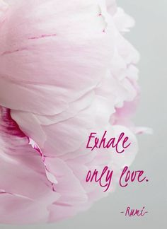 Exhale only love ~Rumi