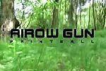 Paintball Bow and Arrow