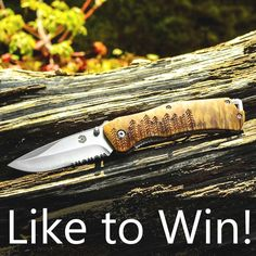 It's Giveaway Time☺☺☺ DoubleTap the pic to BE A WINNER!!! Be sure you tag any of your pals for a better chance to be a WINNER of free or discounted goods!  Good Luck������ #hunt  #deerhunting  #huntingworldwide  #bow  #whitetail  #archeryelk http://misstagram.com/ipost/1556105702141845072/?code=BWYZeQ5H95Q