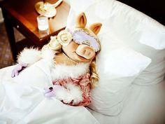 I think Miss Piggy might be my spirit animal. Little Miss Piggy, Kermit And Miss Piggy, Kermit The Frog, Miss Piggy Meme, Miss Piggy Quotes, Die Muppets, Piggy Muppets, Lenny Kravitz, Danbo