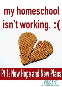 Homeschool help: What do you do when things aren't working? Here's one mom's story. | vibranthomeschooling.com |