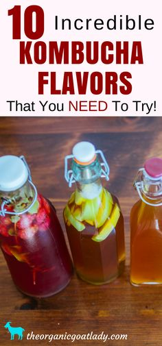 Kombucha Recipe: 10 amazing kombucha flavors that are sure to become your new favorites! Do you love to try new kombucha flavors? Kombucha Flavors, How To Brew Kombucha, Probiotic Drinks, Best Probiotic, Kombucha Tea, Flavored Kombucha Recipe, Making Kombucha, Kombucha Brewing, Kambucha Recipe