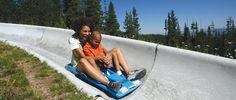 Alpine slide riders at Winter Park Resort Winter Park & The Fraser Valley Colorado