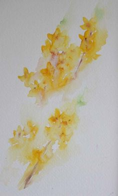 Watercolours With Life: Forsythia in Watercolour 2016