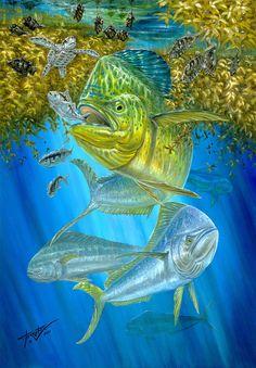 Mahi Mahi Painting - Mahi Mahi Hunting In Sargassum by Terry Fox Mahi Fish, Mahi Mahi, Underwater Art, Underwater Photography, Salt Water Fish, Deep Sea Fishing, Fish Print, Saltwater Fishing, Wildlife Art