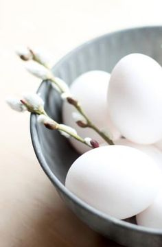 white eggs with buds | Easter egg . Osterei . œuf de Pâques | @ stylizimo |