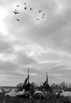 Taking the shot. #Goose #Hunting #Waterfowl