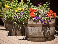 schöne Blumengefäße aus alten Holzfässer für mediterranes Flair