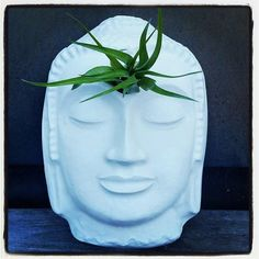 Buddha wall planter air plant holder wall planter with