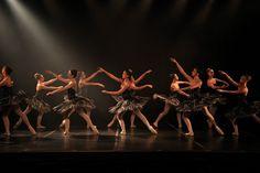 """A tradicional Escola de Dança de São Paulo, que tem mais de 75 anos de existência, abre inscrições para 13 diferentes """"Cursos Livres"""", voltados para adultos – pessoas maiores de 18 anos –, com ou sem experiência na área."""
