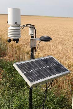 Les producteurs utilisent des outils d'aide à la décision, comme ici un pluviomètre, pour limiter les apports en eau au minimum nécessaire.