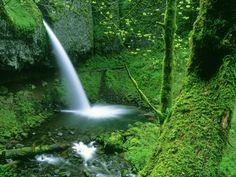 waterfalls | Mountains & Waterfalls - Mountains & Waterfalls Wallpaper (5836292 ...