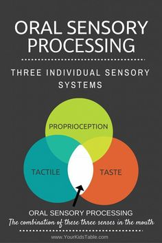 Everything about Oral Sensory Processing