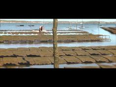 Le Bassin d'Arcachon - YouTube Monuments, Bordeaux, Painting, Bordeaux Wine, Painting Art, Paintings, Painted Canvas, Drawings
