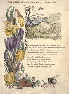 """Or the Chronicle of Crows, A Tale of the Spring Time. """"A rather sad tale, told in rhyme, of a group of crows who lose some of. Illustrations, Illustration Art, Nursery Rhymes Poems, Old Poetry, Kids Poems, Vintage Fairies, Fairy Art, Book Of Shadows, Wall Collage"""