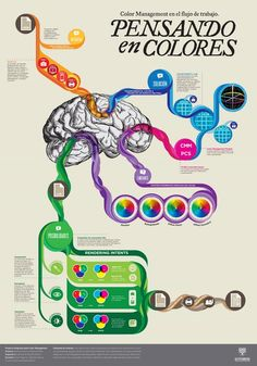 Infografías Color Managment | Designals