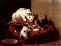 Education. Henriette Ronner was the most popular Dutch woman painter of her time (1821-1909) and was internationally famous. She was a prolific painter who specialized in portraits of cats and dogs.