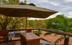 Baluleni Safari Lodge in the Limpopo Province shares an open border with the Kruger Park itself allowing wildlife to roam unobstructed between the nature reserve and the national park. Kruger National Park, National Parks, Nature Reserve, Lodges, South Africa, Safari, Wildlife, Patio, Outdoor Decor