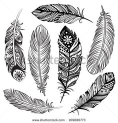 Set of ethnic feathers - stock vector
