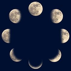 Find Moon Phases stock images in HD and millions of other royalty-free stock photos, illustrations and vectors in the Shutterstock collection. Sky Moon, Moon Shadow, Grey Tattoo, Moon Phases, Graphic Organizers, Photo Editing, Royalty Free Stock Photos, How To Memorize Things, Alchemy