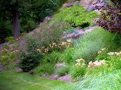 Lots of color on a steep slope. Over 400 perennials were used in this landscape.  http://www.landscape-design-advice.com/landscaping-steep-slopes.html