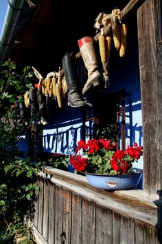 Cook Books, Central Europe, Hiking Boots, Old Things, Recipes, Cookery Books, Walking Boots, Family Recipes, Recipies