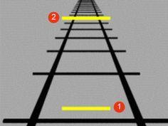 Welke is de langste lijn?