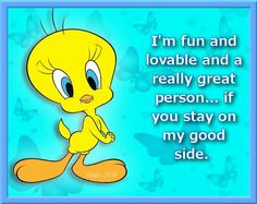 Tweety Bird Funny Picture Quotes, Cute Quotes, Funny Pictures, Funny Quotes, It's Funny, Qoutes, Funny Stuff, Hilarious