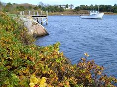 Oyster Pond(Chatham, MA) in fall.