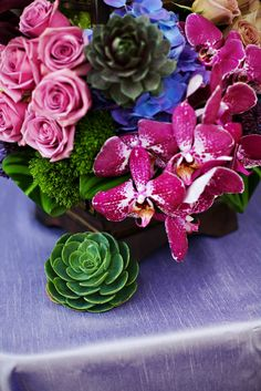 Heavenly Blooms: Urban Chic and Latin American Fusion Wedding Inspiration with Succulents