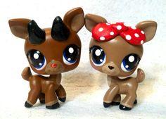 Rudolph & Clarice 2013