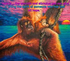 LOVE IS ...VERSE  http://www.zazzle.co.uk/kompas  #love #alanjporterart #kompas #orangutan #monkey #beautiful #quote #hope #verse #zazzle #soul #baby